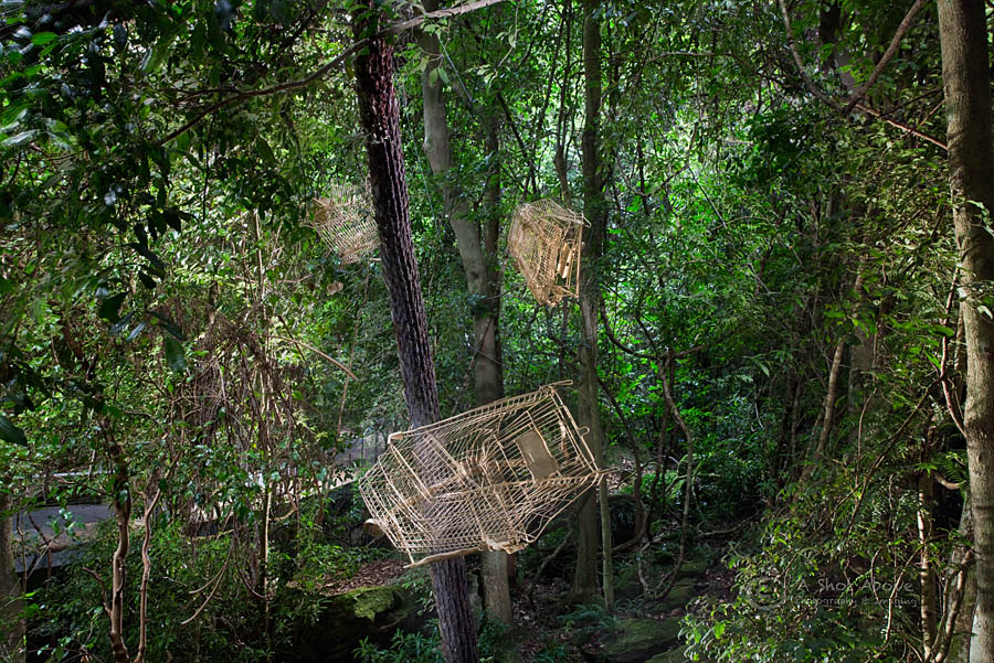 Tunni Kraus, The Golden Shopping Trolley, 2016