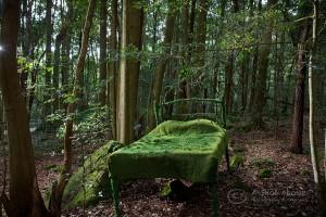 Motoko Katsuta Kitano, Dream/Yume 2015