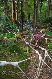 Irene Anton, Intervention Invading Network - net no. 45, 2015